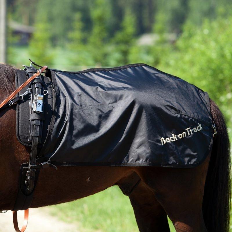 Back on Track Treeniloimi ravihevoselle Ruotsalainen malli