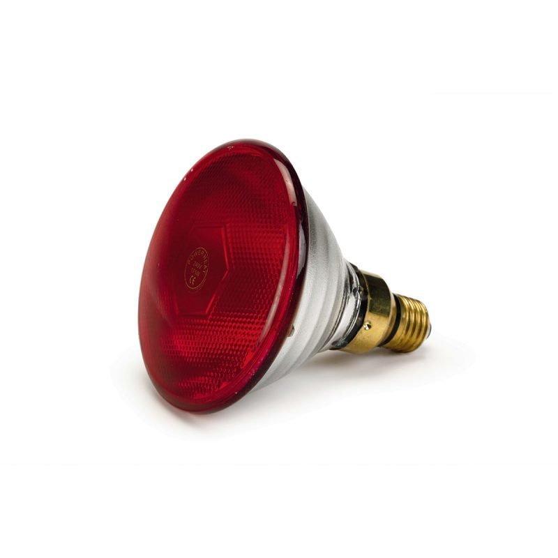 Beeztees Infrapunalamppu PAR38 175W