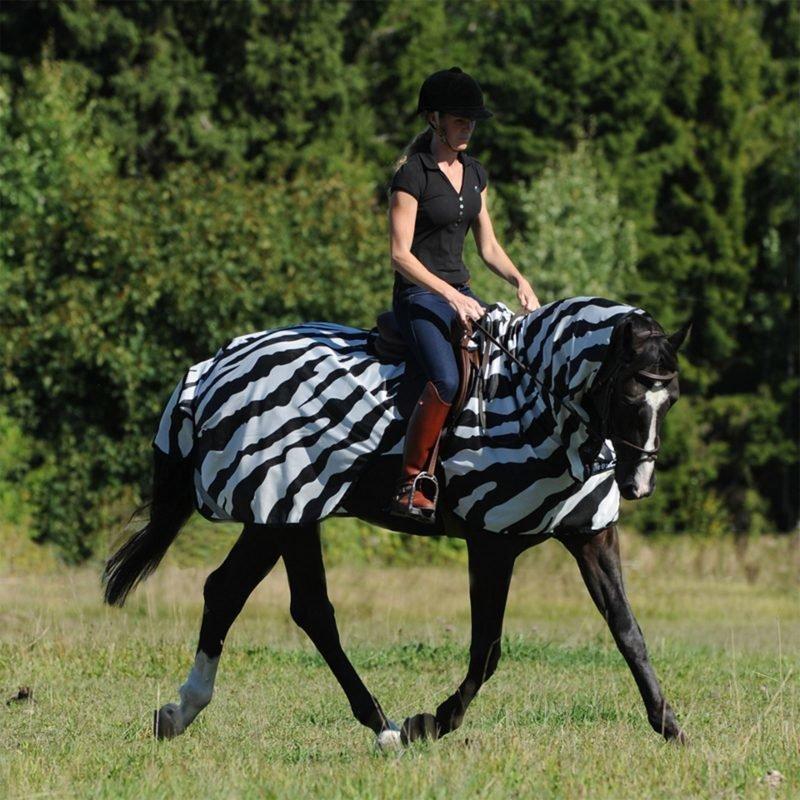 Buzz-Off Zebra ratsastusloimi