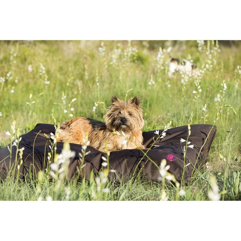 Horseware Amigo koiran sänky 600 g Medium
