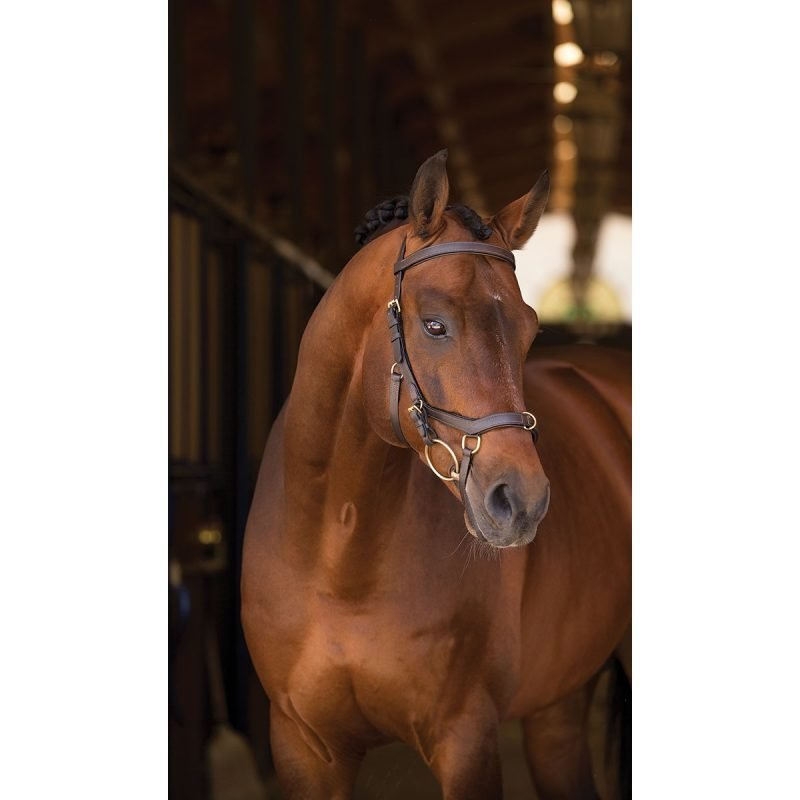 Horseware Rambo Micklem Multi suitset