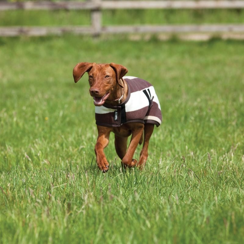 Horseware koiran fleeceloimi Whitney M-XXXL