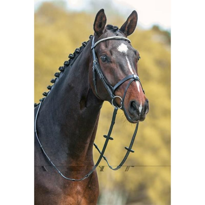 Mountain Horse Gladstone bridle