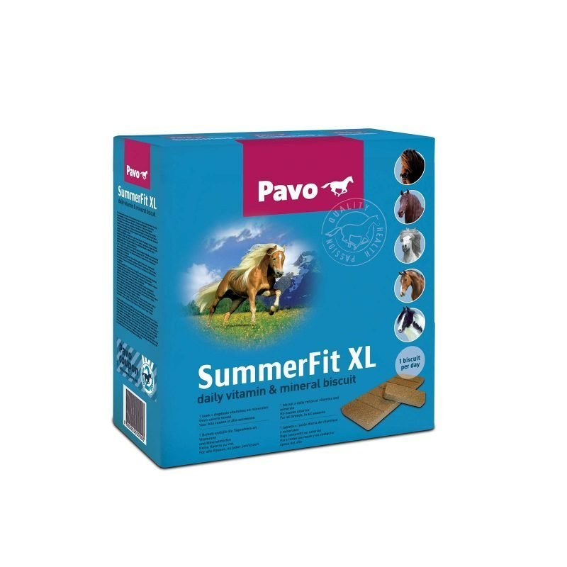 Pavo SummerFit XL (90 brickets)