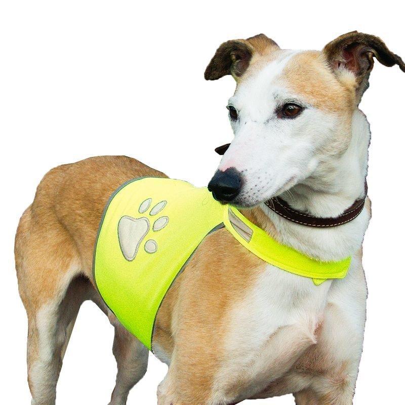 sg-heijastintakki koirille